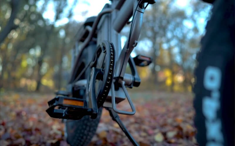 Rattan ebike lm750 detail