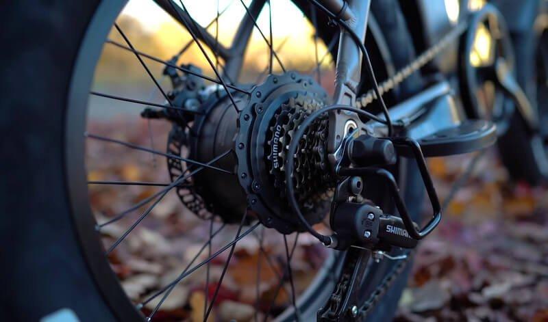 rattan ebike hub motor