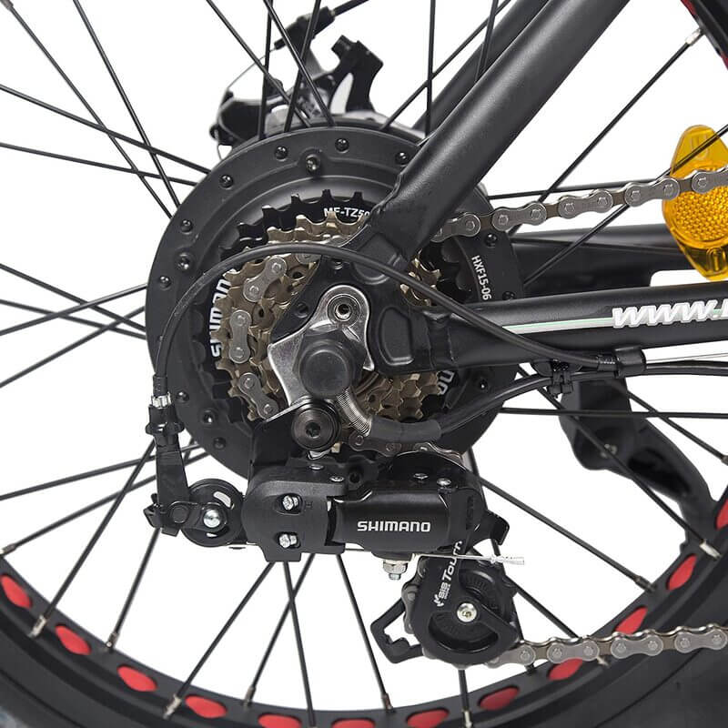 Ecotric Electric Bike FAT20810 gear